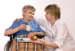 lady giving meal to old woman